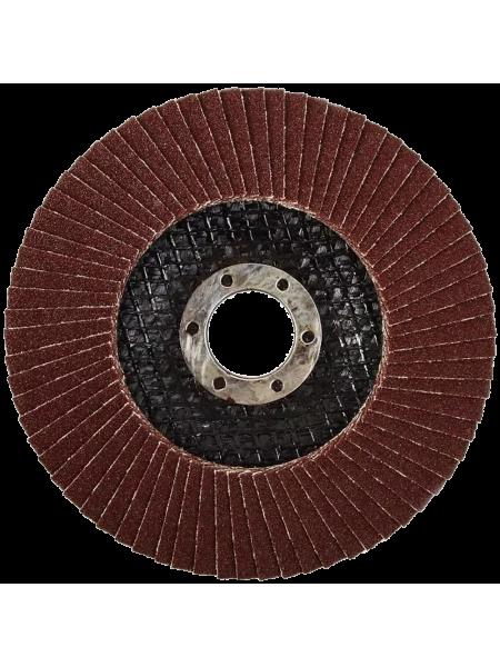 Круг лепестковый по стали №309 d125 P60